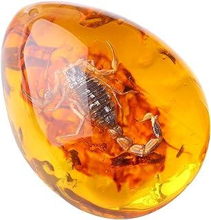 xinzhi Insecto ámbar, ámbar fósil, ámbar Natural, ámbar, joyería, especímenes, artesanías como Regalos creativos - Escorpión