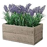 My Gift Concrete Planter