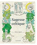 Sagesse celtique