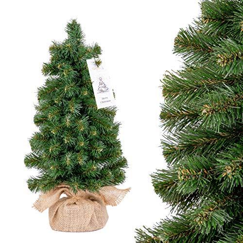 FairyTrees Mini árbol de Navidad, Abeto Nordmann versión Mini, Árbol...