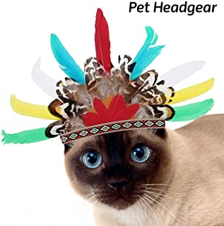 Idepet Pet Costume Dog Cat Headgear Halloween Dragon Fruit/Indian Feather/Dinosaur Design Hat Dog Cat Adjustable Cap for Halloween Xmas Festival Birthday Theme Party Photo Prop