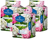 Floragard Endless Summer Hortensienerde rosa/weiß 3x20 L • zum Pflanzen und Umtopfen • für Beet- und Kübelbepflanzung • für weiße, rosa und pinke Hortensien • mit Tongranulat • 60 L