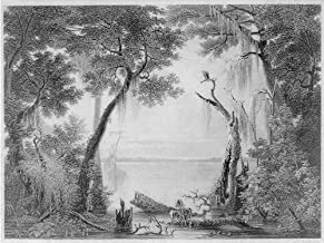 Infinite Photographs Photo: The Lake of The Great Dismal Swamp,Virginia,VA,J.G. Chapman,James Smillie