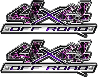 Speed Demon Hot Rod Shop 4x4 Off Road Decals ~ (Set of 2) Pink Skulls Camouflage 4WD Truck Stickers BLO4