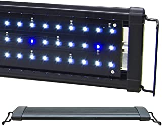 Best beamswork hi lumen Reviews