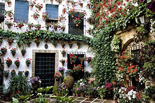 zhangshifa Puzzles 1000 Pieces,Andalucía España Córdoba Patio Edificio Casa Bokeh Rompecabezas De Paisajes Naturales,Juego De Jigsaws Puzzle para Niños Adultos-75 * 50Cm(Puzzle De Pintura)