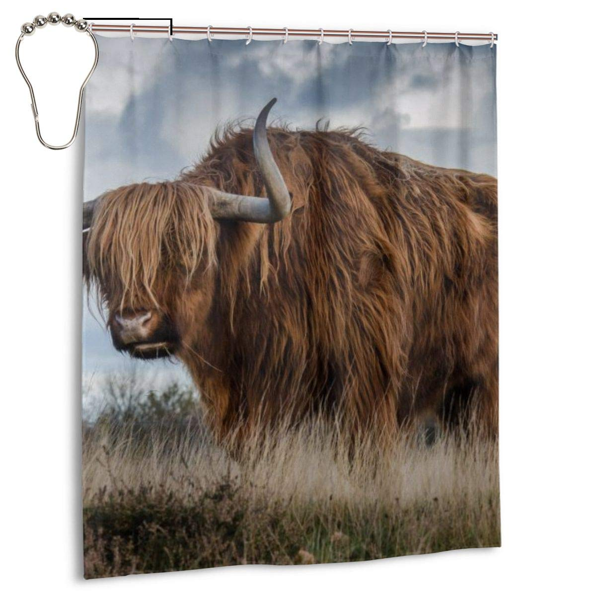 Shower Curtain Portrait Of A Highland Cow 60 X 72Inch FREE SHIPPING