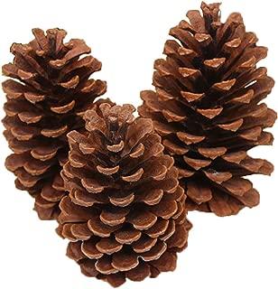 B bangcool Christmas Pine Cone Decorative Natural DIY Christmas Ornament Xmas DecorationHappy Chrismas Supplies