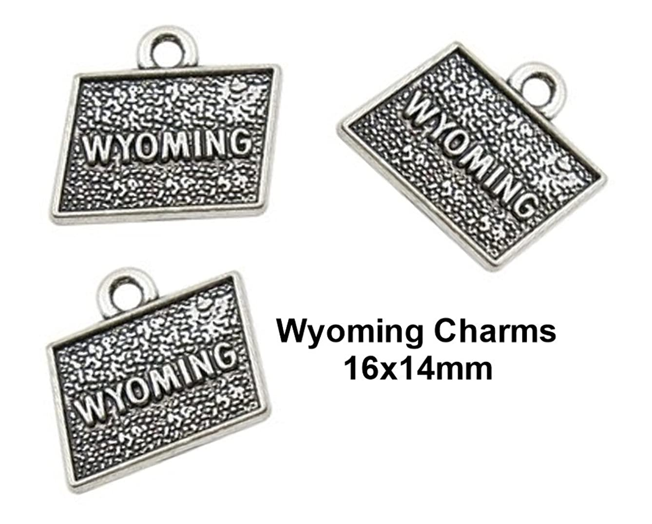 PlanetZia 10pcs Wyoming State Charms for Jewelry Making TVT-WYO (Antique Silver)