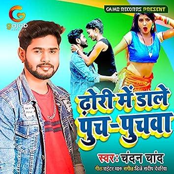 Dhori Me Dale Puch Puchwa (Bhojpuri Song)