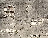Pared Los Pícaros wr50520trozos de hormigón Pared–Pasta la pared papel pintado de–300cm x 240cm), color gris
