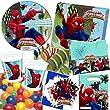 101-teiliges Party-Set   ULTIMATE SPIDERMAN WEB WA
