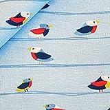 Stoff Baumwolle Meterware Jersey hellblau Vögel Vogel
