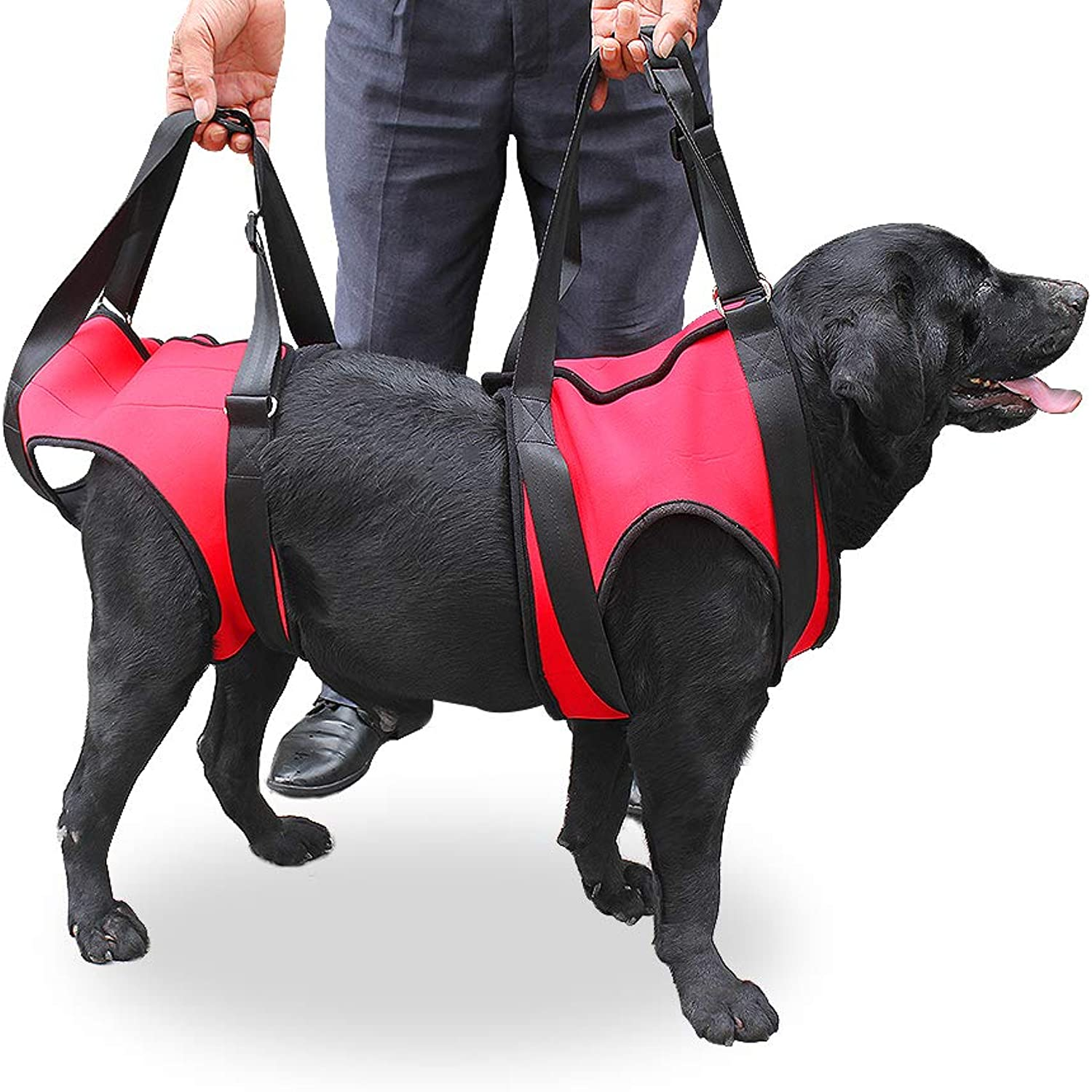 FastEngle Portable Dog Lift Support Harness Dog Auxiliary Belt with Handle for Canine aid Dog Rehabilitation Harness Assist Sling Helps Medium and Large Dog Pet to Go Up Down Stairs, (S, Red)