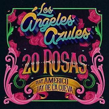 20 Rosas