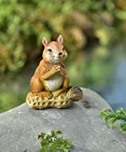 Fairy Garden Mini - I'm Wearing The Smile You Gave Me - Squirrel and Peanut
