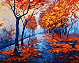 framedpbn Malen nach Zahlen Kits paintworks DIY Öl Gemälde mit Holzrahmen, 34x 43,9cm 13.4' X17.3' IC0000S22