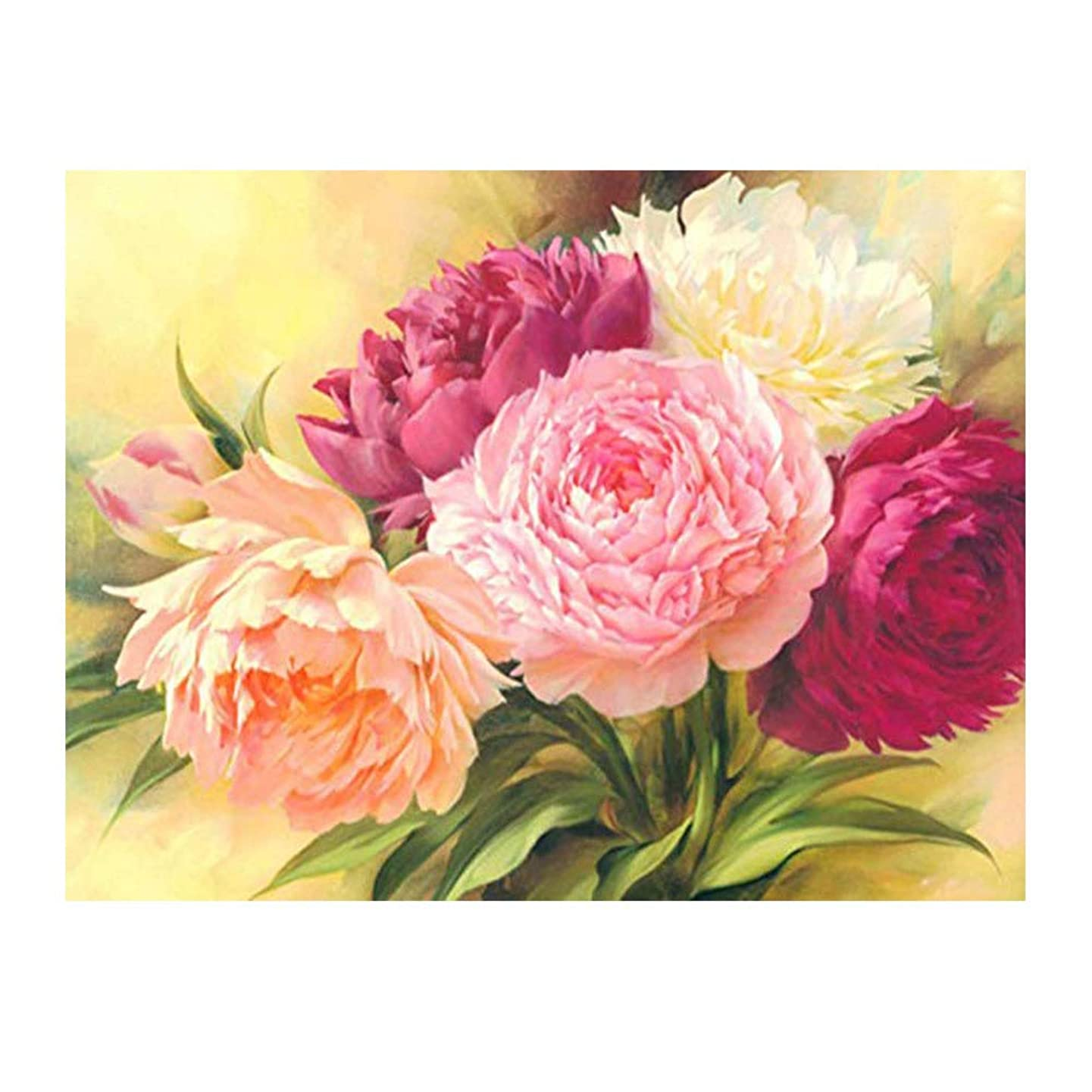 Kimily DIY Paint by Numbers for Adults Kids Flower Peony Paint by Numbers DIY Painting Acrylic Paint by Numbers Painting Kit Home Wall Living Room Bedroom Decoration Peony Flowers