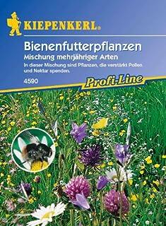 Bienenfutterpflanzen, Mix mehrj&aumlhriger Arten