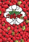 モヤモヤさまぁ〜ず2(Vol.32 & Vol.33)DVD BOX