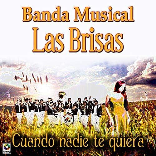 Banda Musical Las Brisas