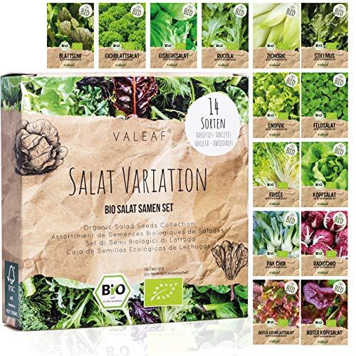 valeaf -  Bio Salat Samen Set