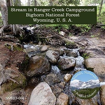 Stream in Ranger Creek Campground