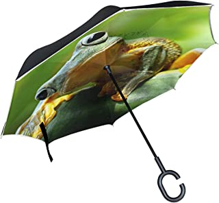 ALAZA Cute Green Tree Frog Leaves Inverted Double Layer Windproof Reverse Umbrella