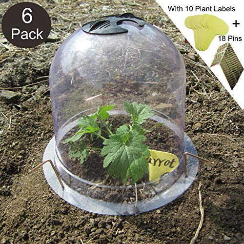 SYITCUN Protective Garden Cloche Reusable Plastic 6 Pack Plant Bell Cover Plant Protector Cover for Season extention with Ground Securing Pegs 8quot Diam x 7quot Height