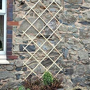 Garden Mile® 2ft x 6ft Expanding Wooden Garden Trellis Robust Climbing Plant & Vegetable Support Natural Wood Garden Lattice Trellis (6ft x 2ft)