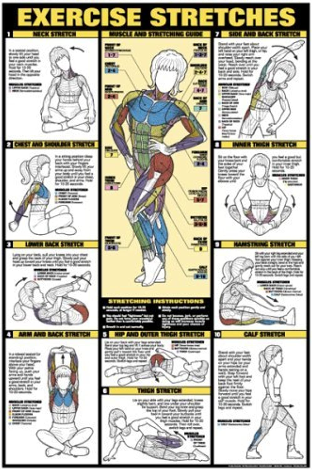 Exercise Stretches 24 X 36 Laminated Chart by Fitnus Chart Series
