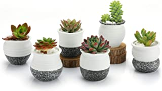 T4U 2.5 Inch Small Ceramic Succulent Planter Pots with Drainage Hole Set of 6, Snowflakes..