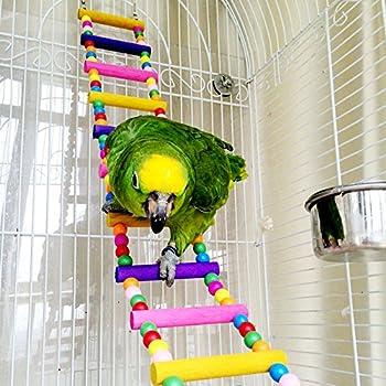 Jouet Oiseaux - Echelles/Balan?oires pour Perroquet Jouet Oiseau Cage Installation (10 ¨¦chelles)
