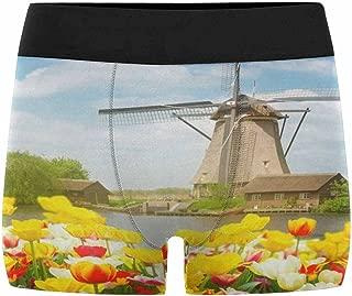 XS-3XL INTERESTPRINT Mens Boxer Briefs Underwear Blossom Tulips Windmills