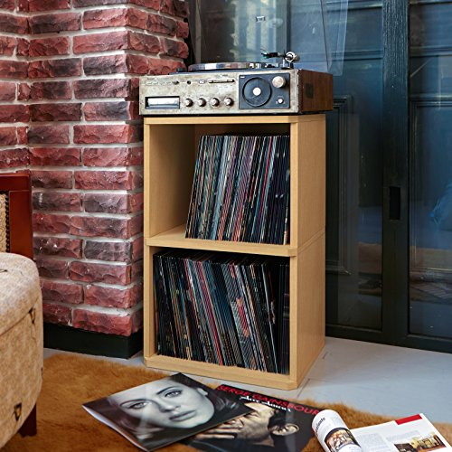 Way Basics 2-Shelf Vinyl Record Storage Cube and LP Record Album Storage Shelf, Natural (Tool-Free Assembly and Uniquely Crafted from Sustainable Non Toxic zBoard paperboard)