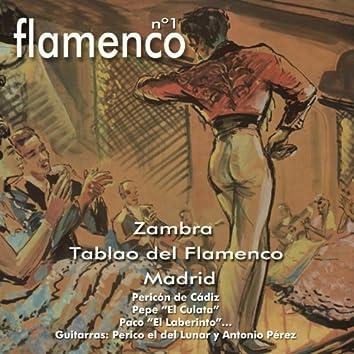 Flamenco No. 1