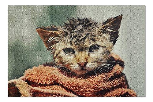 Wet Cat envuelto en toalla 84932 (19 x 27 Premium rompecabezas de 1000 piezas para adultos, fabricado en Estados Unidos).