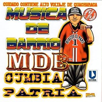 Musica De Barrio (Alto Voltaje De Guacharaca)