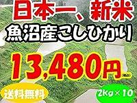 平成28年新潟県産特定産地米 (魚沼産2㎏×10)