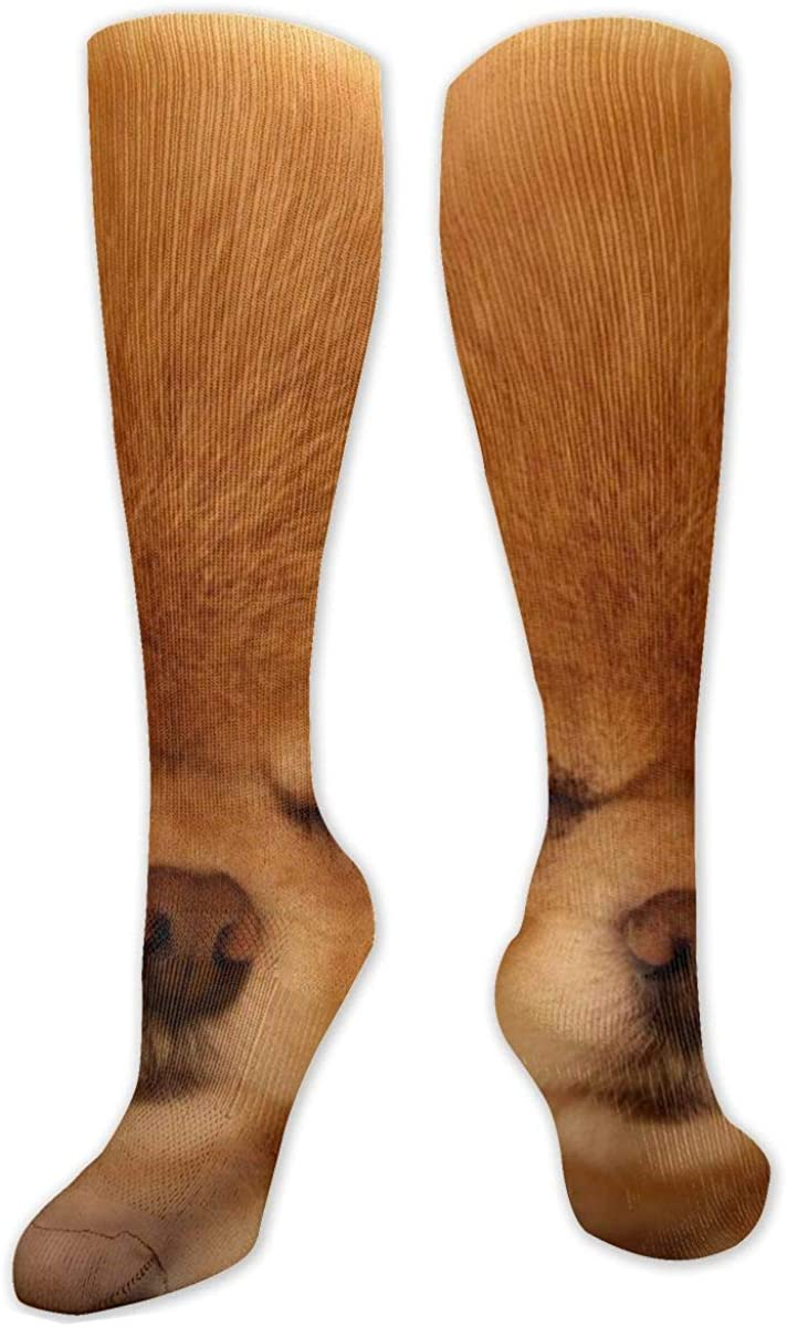 Baby Dogs Knee High Socks Leg Warmer Dresses Long Boot Stockings For Womens Cosplay Daily Wear
