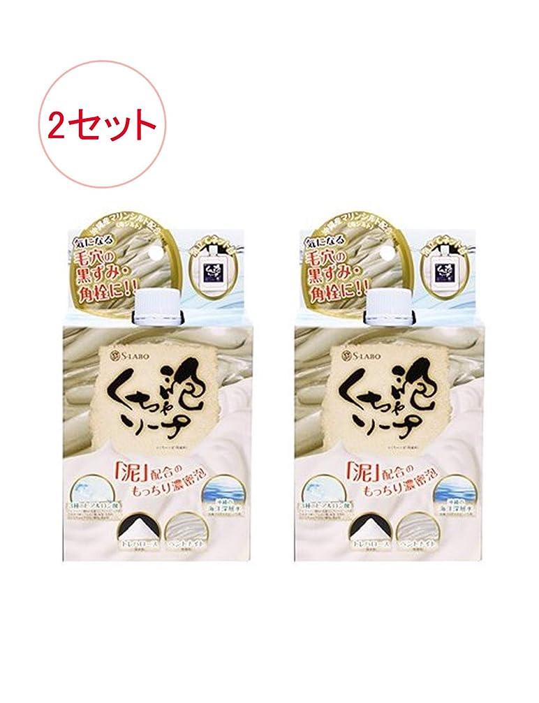 有毒ないたずらな甘い日本製 モコモコくちゃ泡ソープ 100g x 2セット