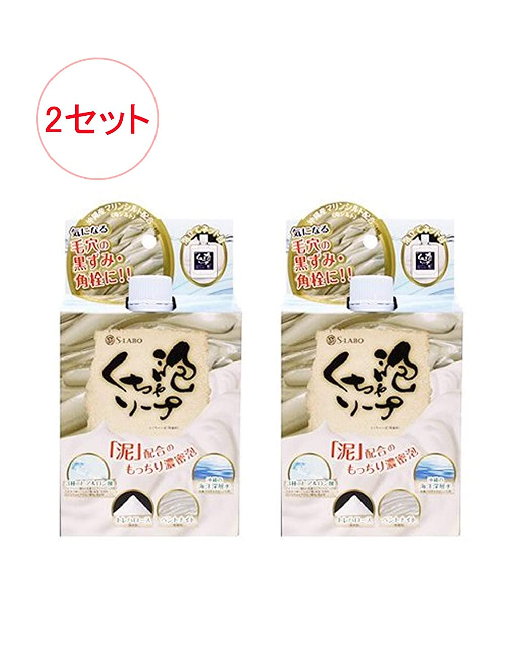 生活しゃがむリスナー日本製 モコモコくちゃ泡ソープ 100g x 2セット