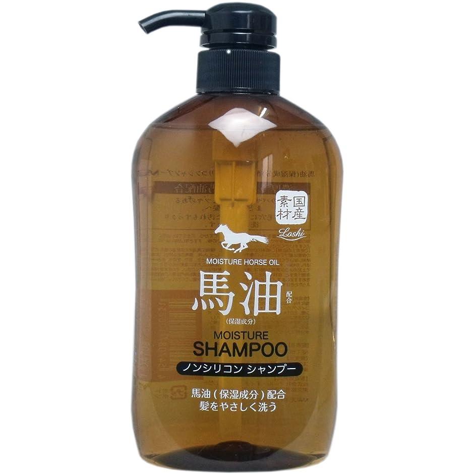 ビジュアル肝繁栄馬油(保湿成分)配合 ノンシリコンシャンプー 600ml