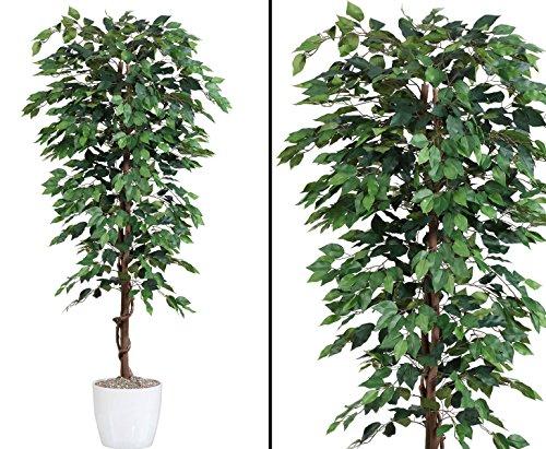 kunstpflanzen-discount.com Kunstbaum 200cm Ficus Benjamini grün mit 2064 Blätter aus Textilfaser Material