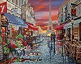 WJGJ Kit de pintura por número para adultos, kit de pintura al óleo para niños o principiante con pinceles de pintura acrílica pigmento, dibujo de pintura 40 x 50 cm (Paris Flower Street)