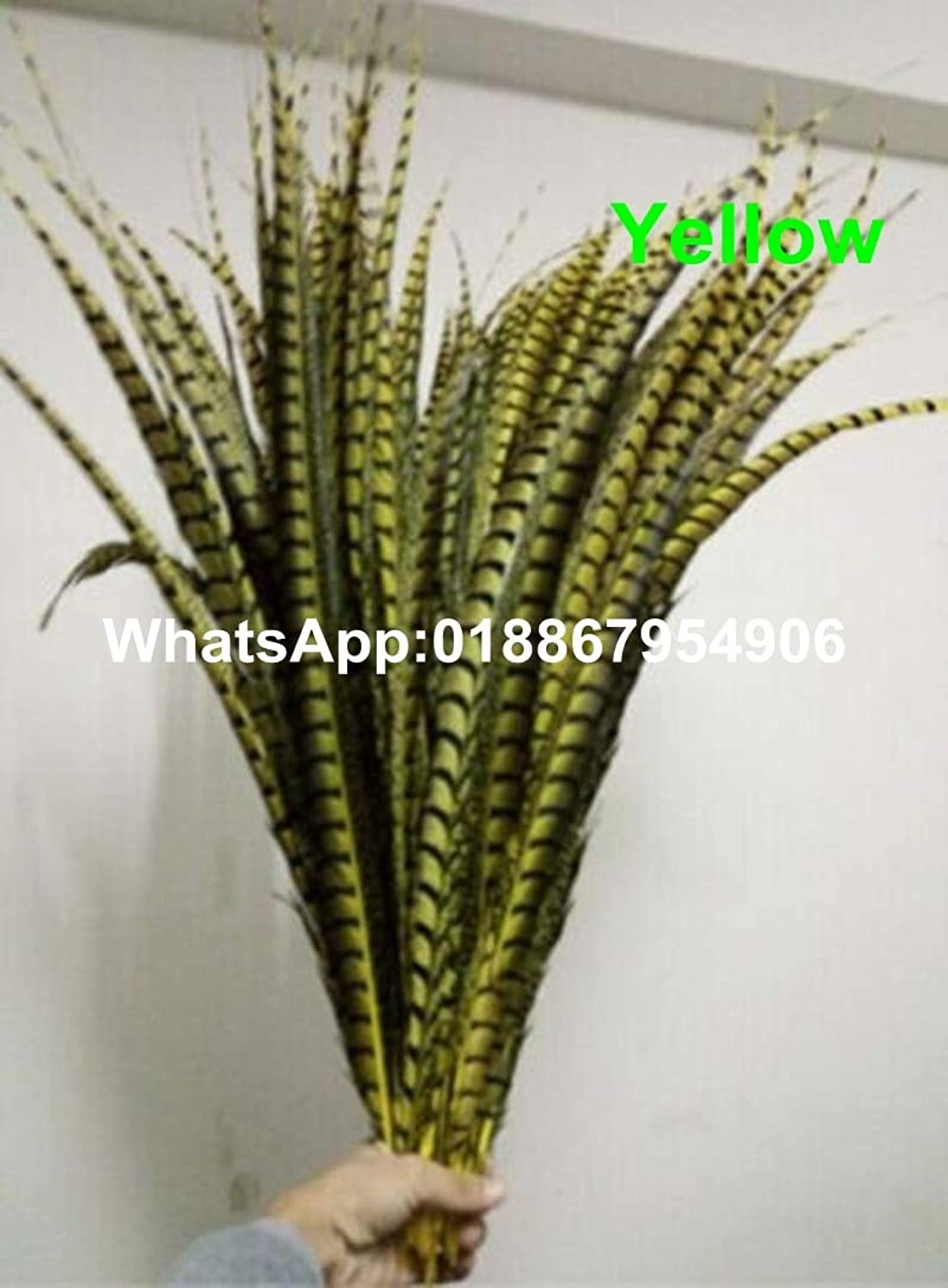Maslin 50pcs Yellow 3035inch(8090cm) Lady Amherst Pheasant side Tail Feathers for costumes