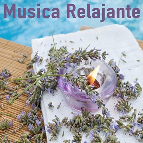 The Spanish Guitar, Guitar & Relajacion y Guitarra Acustica