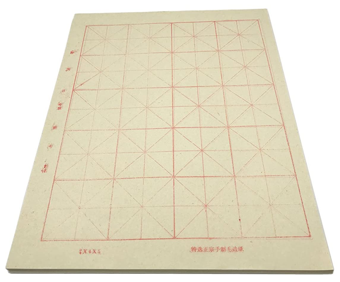 Easyou Sumi Paper Handmade Xuan Paper with Grids for Students Beginning Calligraphy Practice (12.8