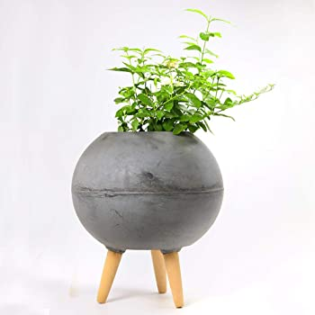 Paudhe Se Yaari Dark Grey Cement Planter Pot with Wooden Stand. Large Mid Century Modern Planter Pot. Perfect for House Plants Modern Home Office Outdoor Indoor Patio Deck Porch Balcony Garden Décor.