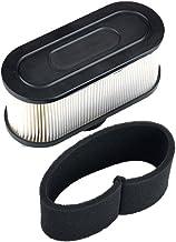SV150 Mountfield Genuine Castel Garden 150cc Paper Air Filter Part No 118550147//0 M150